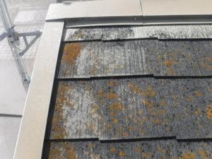 和泉市の外壁塗装・屋根塗装専門店ロードリバース288