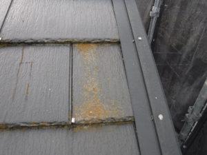 和泉市の外壁塗装・屋根塗装専門店ロードリバース326
