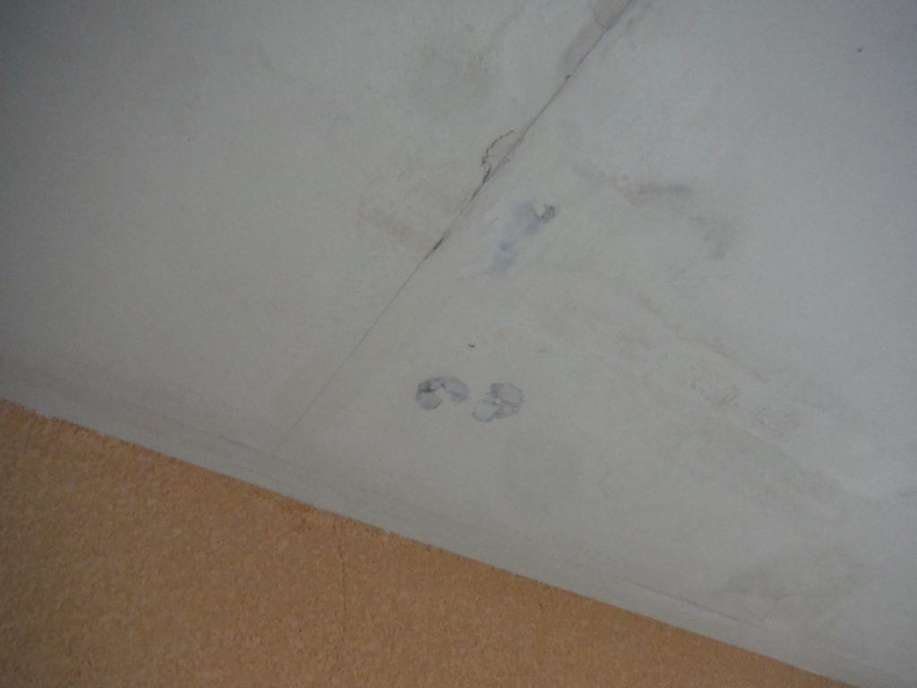 和泉市の外壁塗装・屋根塗装専門店ロードリバース1372