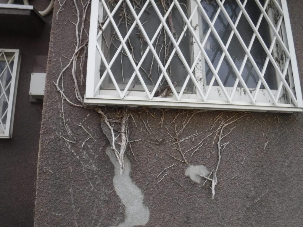 和泉市の外壁塗装・屋根塗装専門店ロードリバース1434