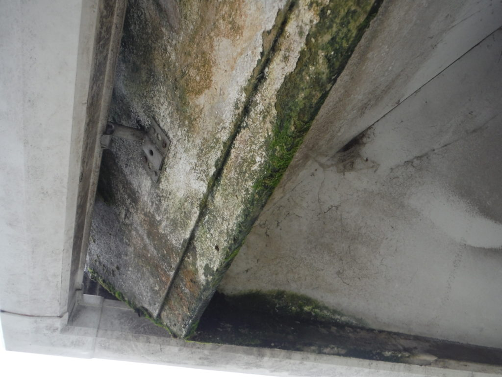 和泉市の外壁塗装・屋根塗装専門店ロードリバース1514