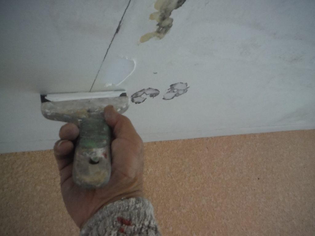 和泉市の外壁塗装・屋根塗装専門店ロードリバース1371
