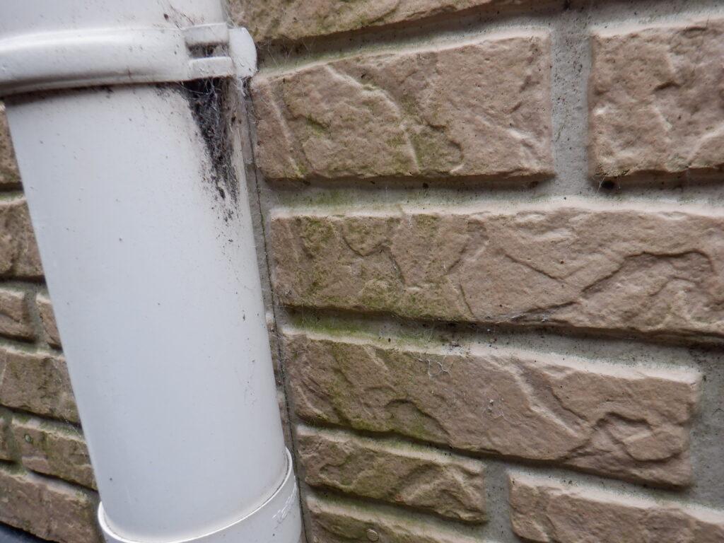 和泉市・泉大津市の外壁塗装・屋根塗装専門店ロードリバース3081