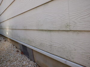 和泉市・泉大津市の外壁塗装・屋根塗装専門店ロードリバース3266