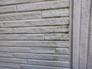 和泉市・泉大津市の外壁塗装・屋根塗装専門店ロードリバース3431
